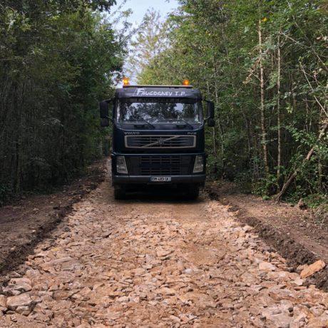 chemin forestier 1