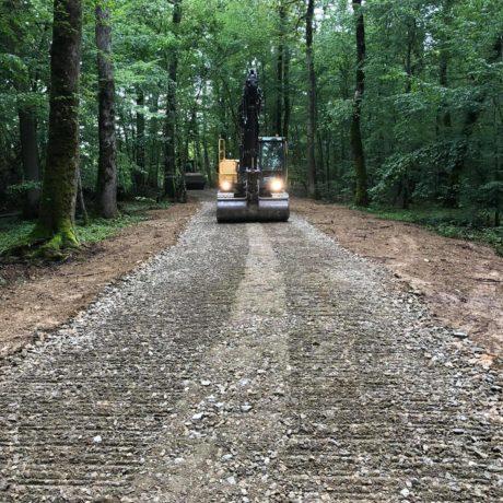 chemin forestier 3