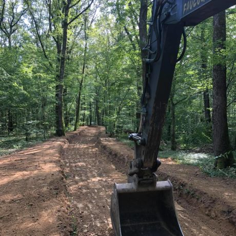 chemin forestier 5